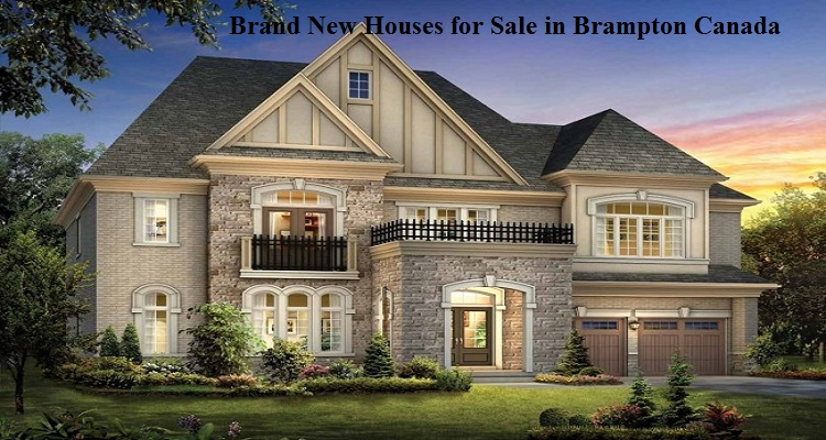 Real Estate Agent in Brampton CA